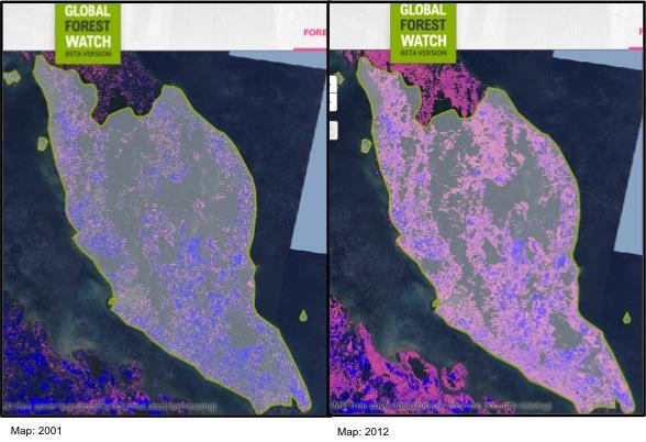 UMD treecover 2001-2012 GFW