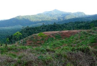 defores-terrace-GM,K'tan_lores